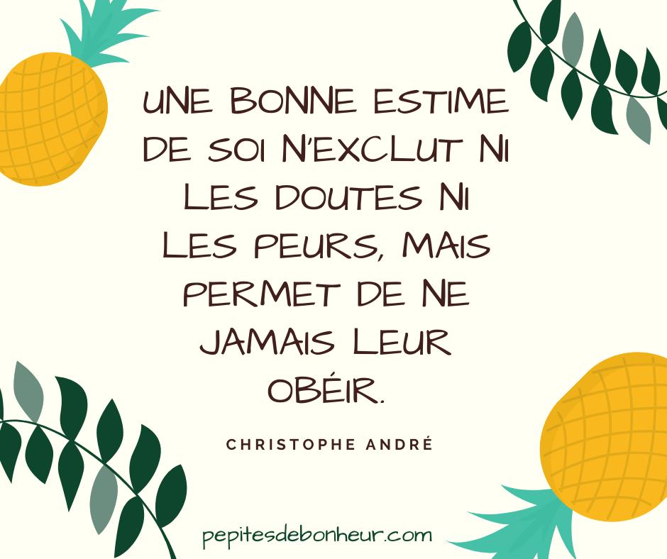 une bonne estime de soi n'exclut ni les doutes ni les peurs mais permet de ne jamais leur obéir christophe andré