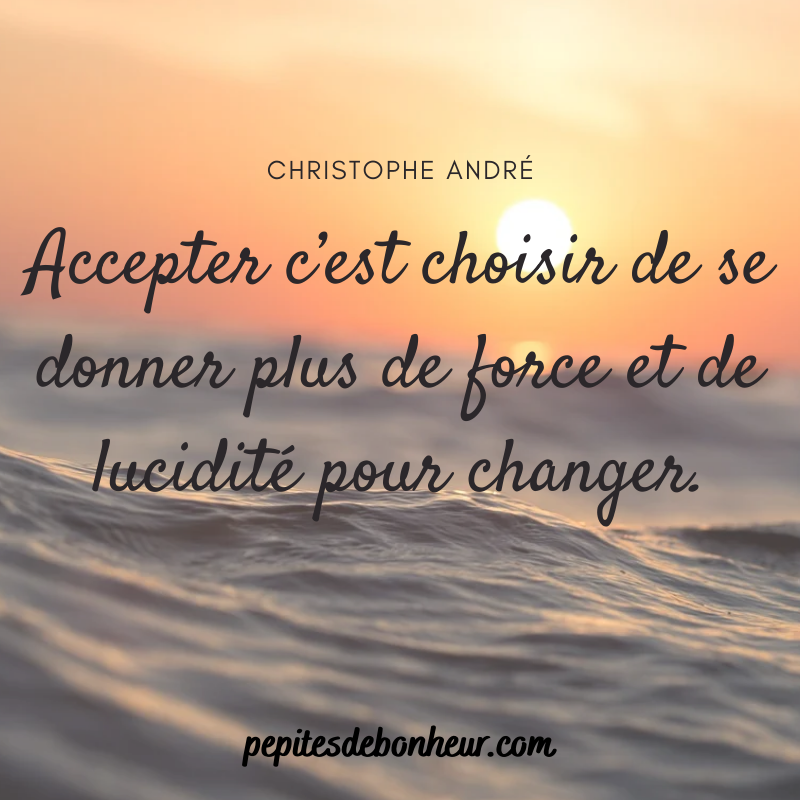 citation boost christophe andré
