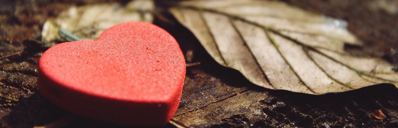 Quels bénéfices à la gratitude ?
